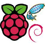 Die gefühlte Internet-Geschwindigkeit mithilfe eines Raspberry Pi, Squid und pdnsd beschleunigen