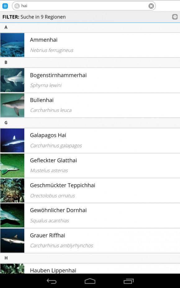 FischFinder: Suche nach Hai