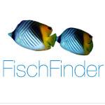 """FischFinder: Android-App für Taucher – das kleine """"was habe ich gesehen""""-Lexikon"""