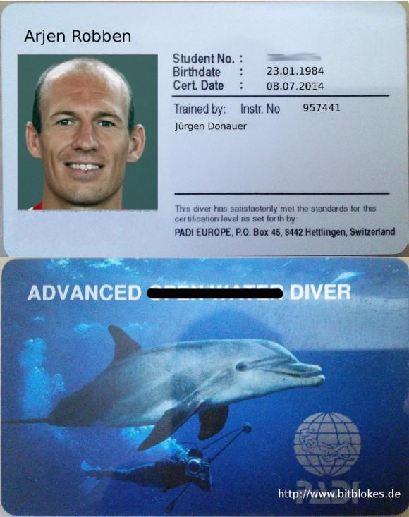 Robben: Advanced Diver