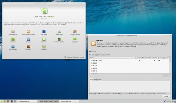 Linux Mint 17.1 Xfce: Willkommen und Kernel-Version
