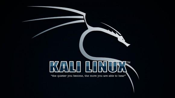 Kali Linux 1.1.0: Wallpaper