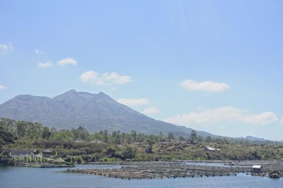 Am Vulkan Batur