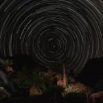 Perseiden: Lange Sternschnuppe im Meteorschauer erwischt