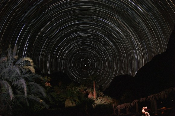 Sternenspur (Star Trail) und Palmen