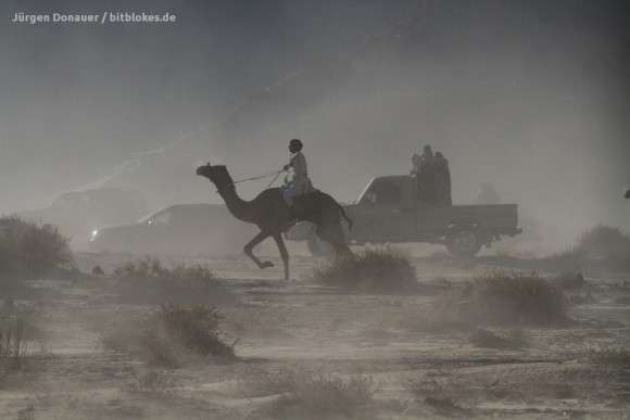 Kamele, Autos und Staub im Wadi Zalaga