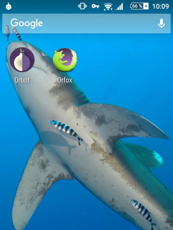 Orfox und Orbot: Android Starter