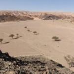 Wadi Marra mit vielen Akazien – 360° Panorama – in der Nähe des Katharinenklosters