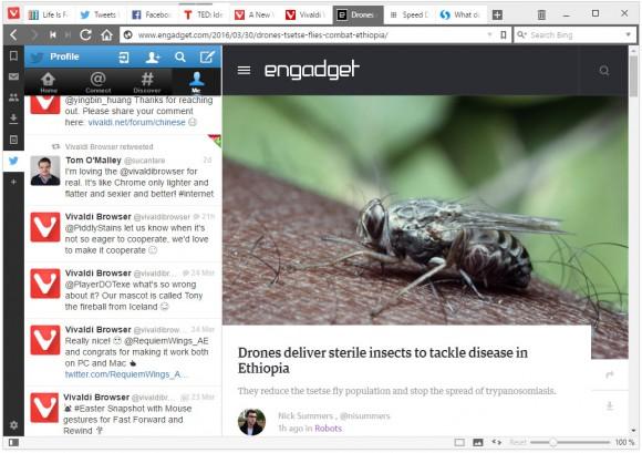 Web-Paneel mit Twitter (Quelle: vivaldi.com)