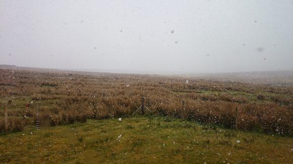 Etwas später: Ordentlicher Schneefall