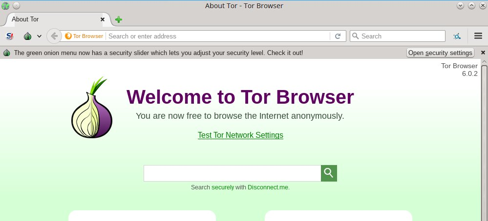 тор браузер deep web hyrda