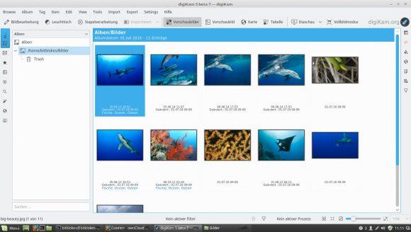 digiKam 5.0.0 unter Linux Mint 18