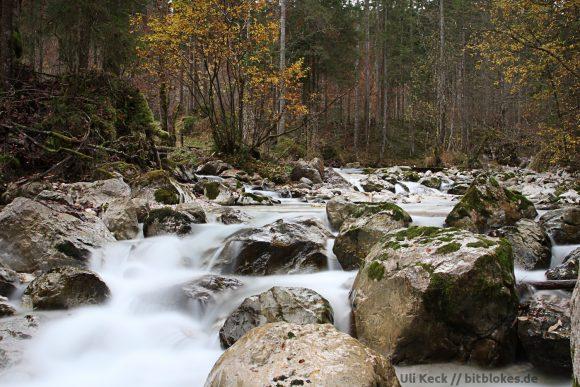 Zauberwald (Foto: Uli Keck)