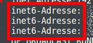 IPv6 unter Linux Mint und Ubuntu wegen VPN-Leck deaktivieren