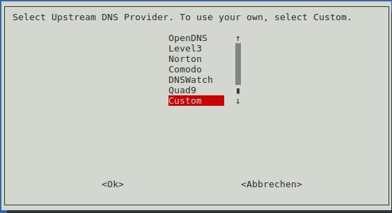 DNS Server hinterlegen