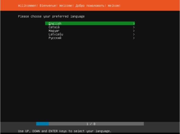 Ubuntu 18.04 Server Installer - Sprachauswahl