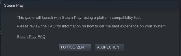 Steam Spiel Wird Ausgeführt