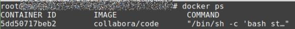 Mit docker ps eine Liste der laufenden Docker Container anzeigen lassen