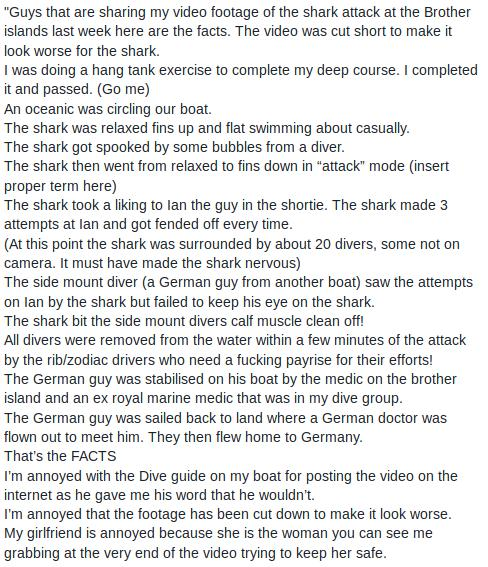 Der Hai war anfangs entspannt ...