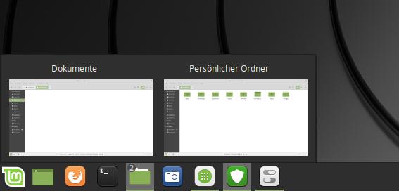 Programme werden bei Linux Mint 19.1 und Cinnamon 4.0 per Standard gruppiert
