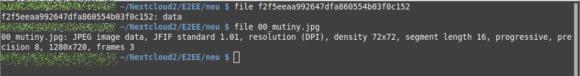 file bestätigt, dass die Datei nicht als JPG identifizierbar ist