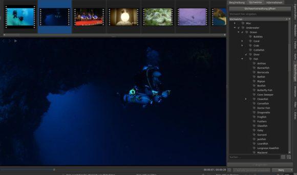 Die Video-verwaltung bei digiKam 6.0.0 ist viel besser geworden