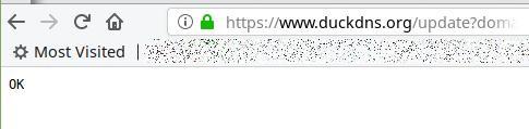 DNS TXT Record bei duckdns.org hinterlegt