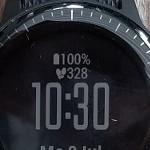 Garmin vívoactive 3 Music funktioniert mit Linux (Smartwatch)