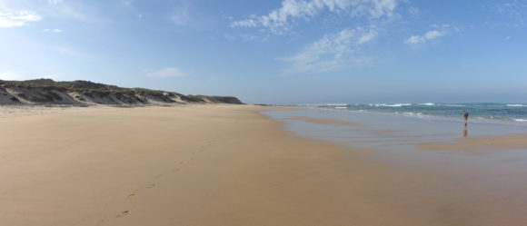 Bei Ebbe lassen sich am Strand viele Kilometer laufen