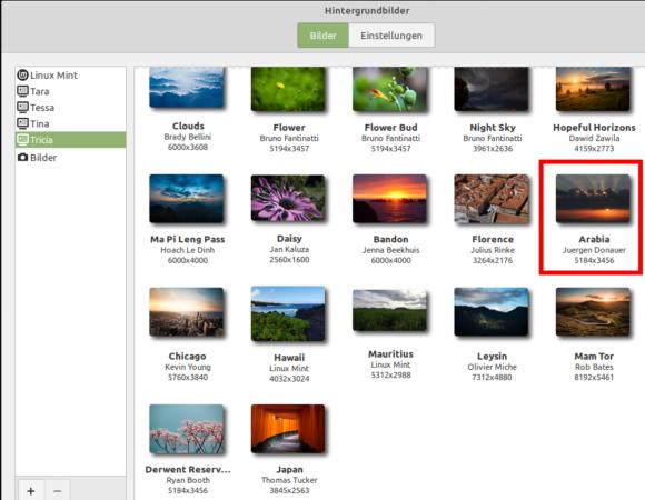 Ein Foto von mir in den Hintergrundbildern von Linux Mint 19.3