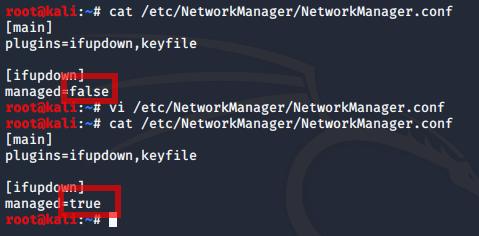 managed=true aktiviert die Ethernet-Schnittstelle