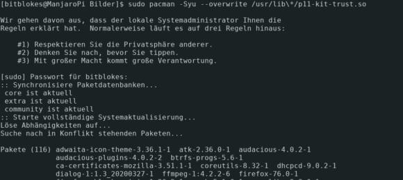 Die in Konflikt stehende Datei mit pacman überschreiben
