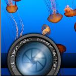 digiKam 7.1 mit besserer Unterstützung für Canon CR3-Metadaten