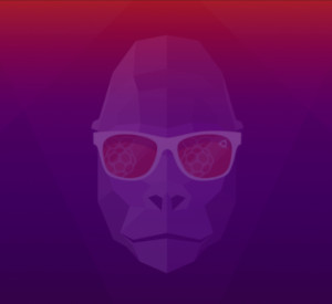 Ubuntu 20.10 für Raspberry Pi kurz getestet – Groovy Gorilla