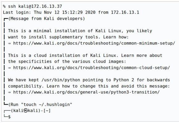 Kali Linux 2020.04 will informativer sein