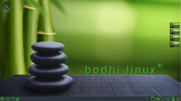 Bodhi 6.0 – Desktop in Grün