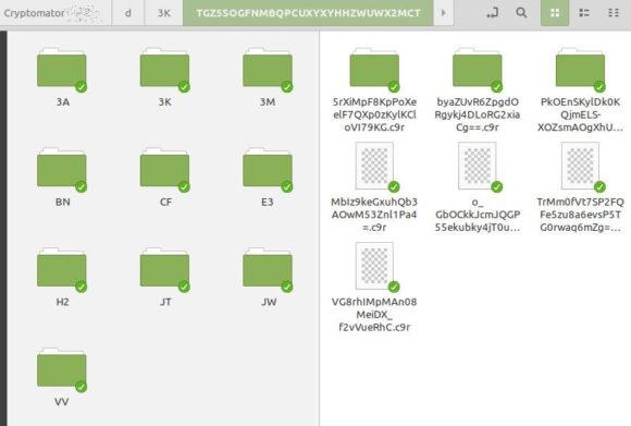Cryptomator verschlüsselt die Dateien, bevor sie hochgeladen werden