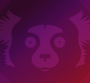 Ubuntu 21.10 Impish Indri auf Raspberry Pi installieren – große Probleme